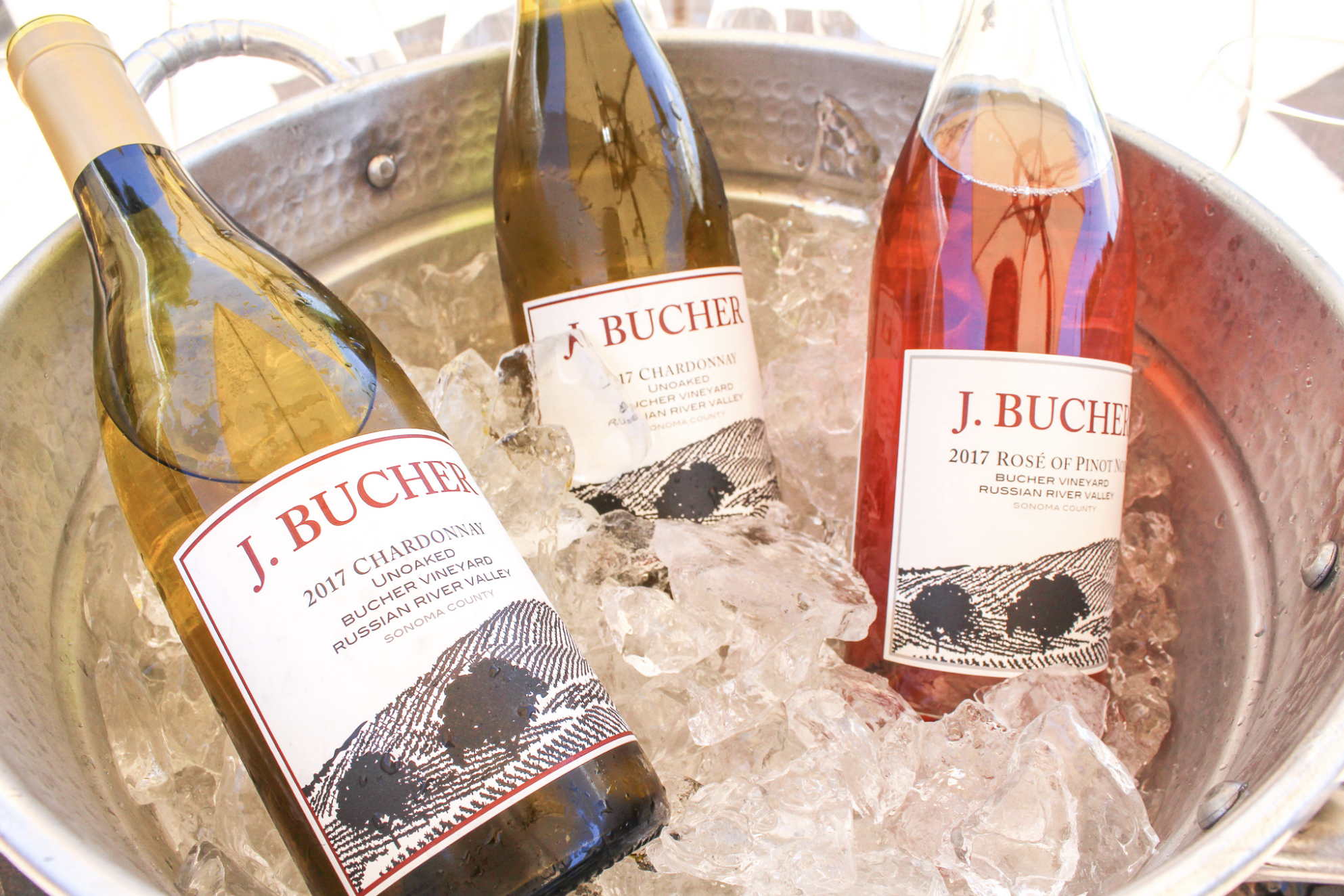 <b> Girl with Glass </b> An Afternoon with Bucher Wines