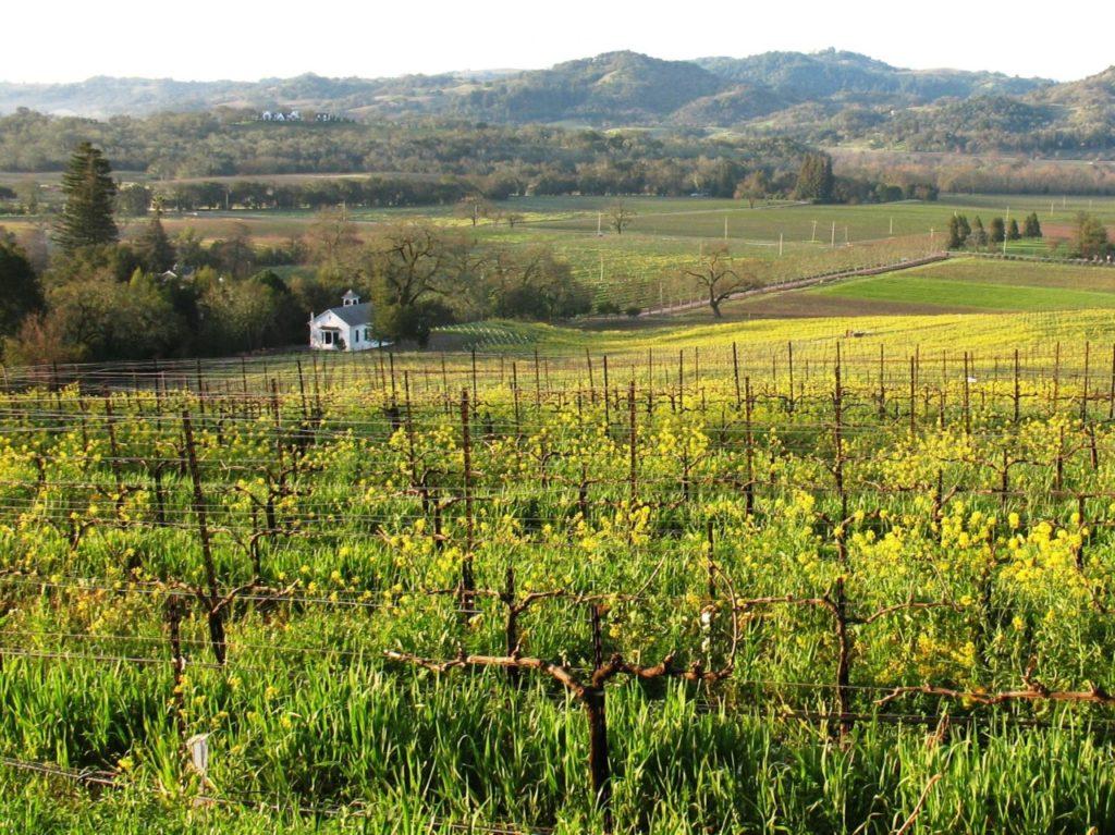 Sonoma Magazine^ 100 Best Sonoma Wines 2018, Bucher Wines