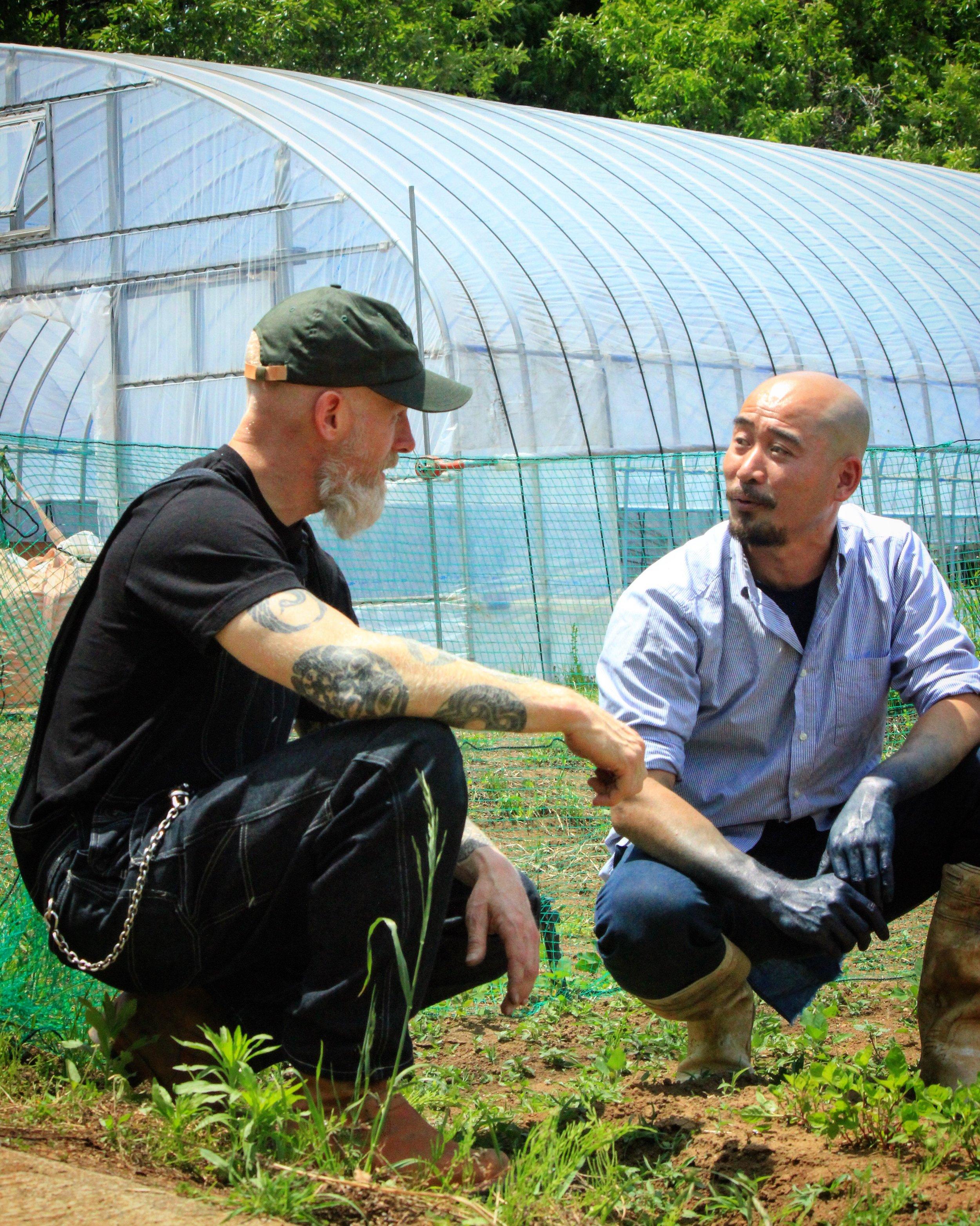 Organic indigo farm in Kyushu, Japan