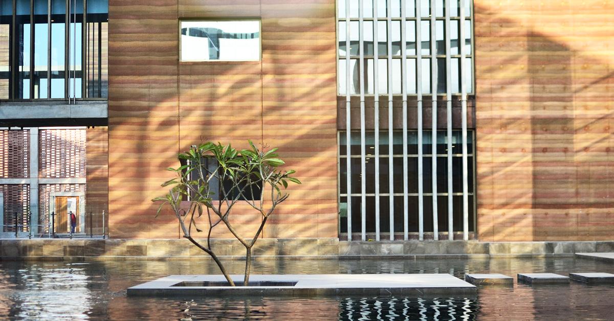 telenor-courtyard-tree-1200.jpg