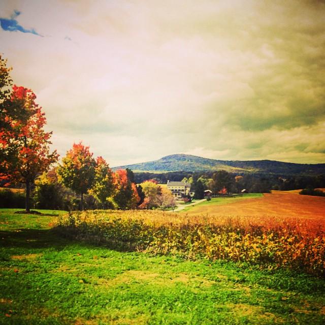 Autumn at its finest 🌿🍁🌰🌾🍎🍃🍂