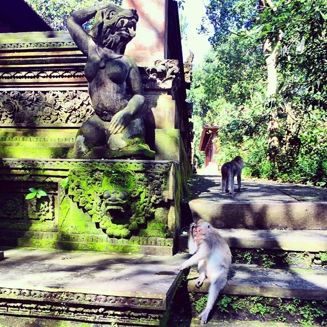 Life imitates art 🙉 #bali  (at Sacred Monkey Forest Ubud Sanctuary)