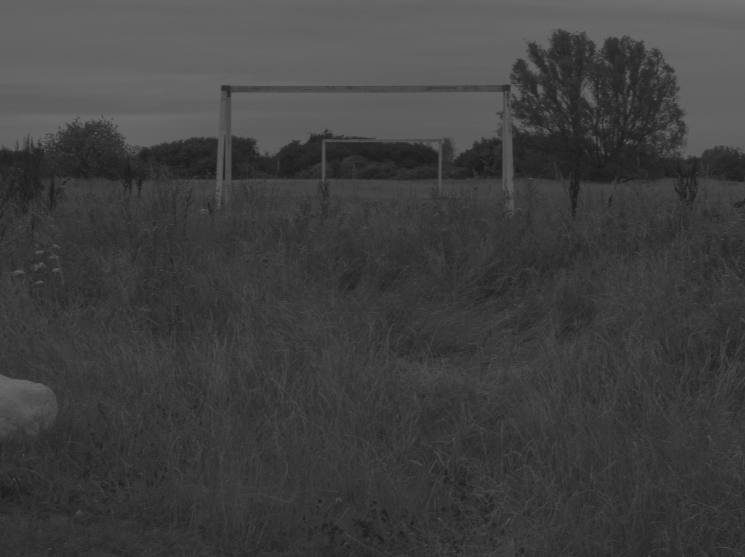 Goal posts.jpg
