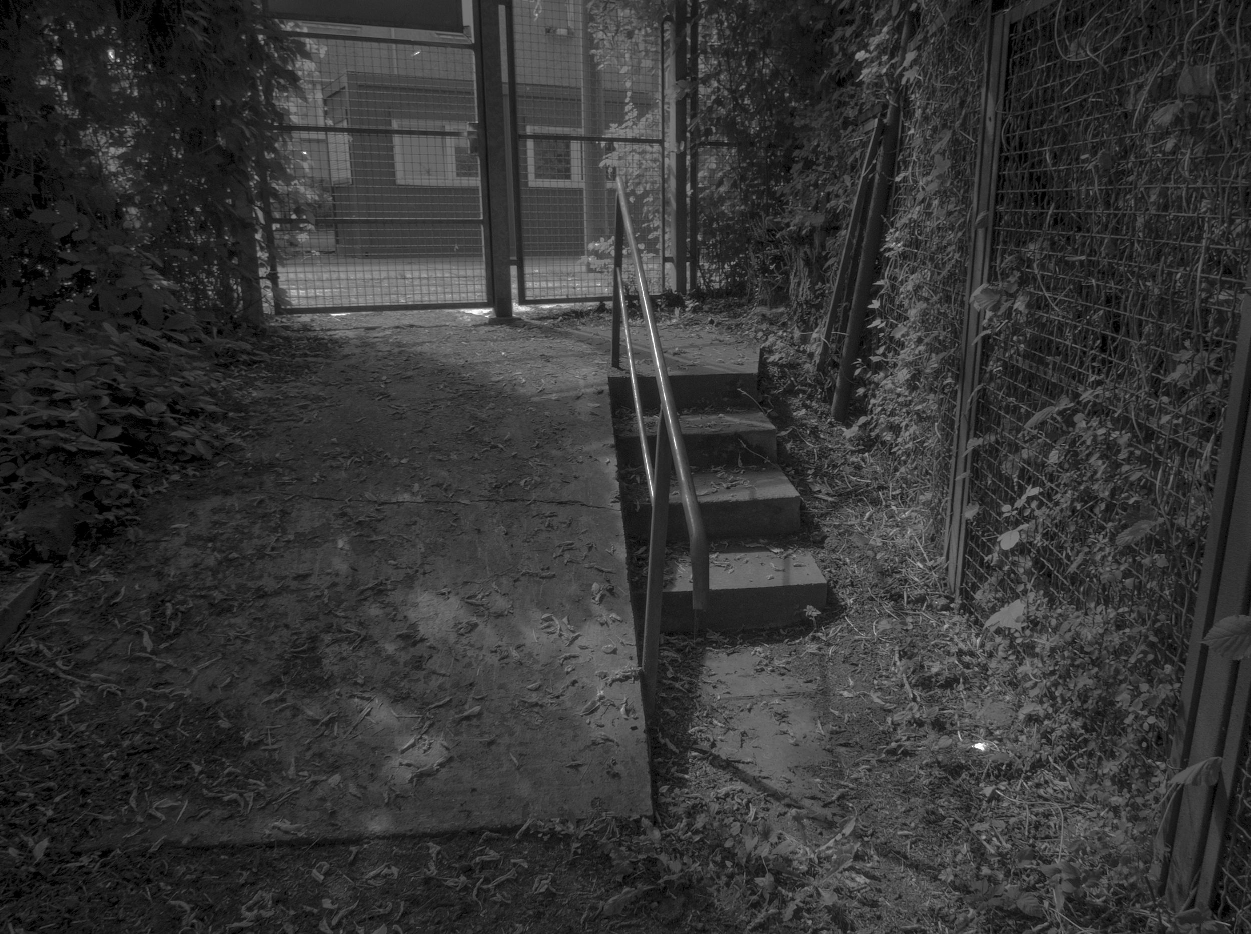 ramp and stairs.jpg