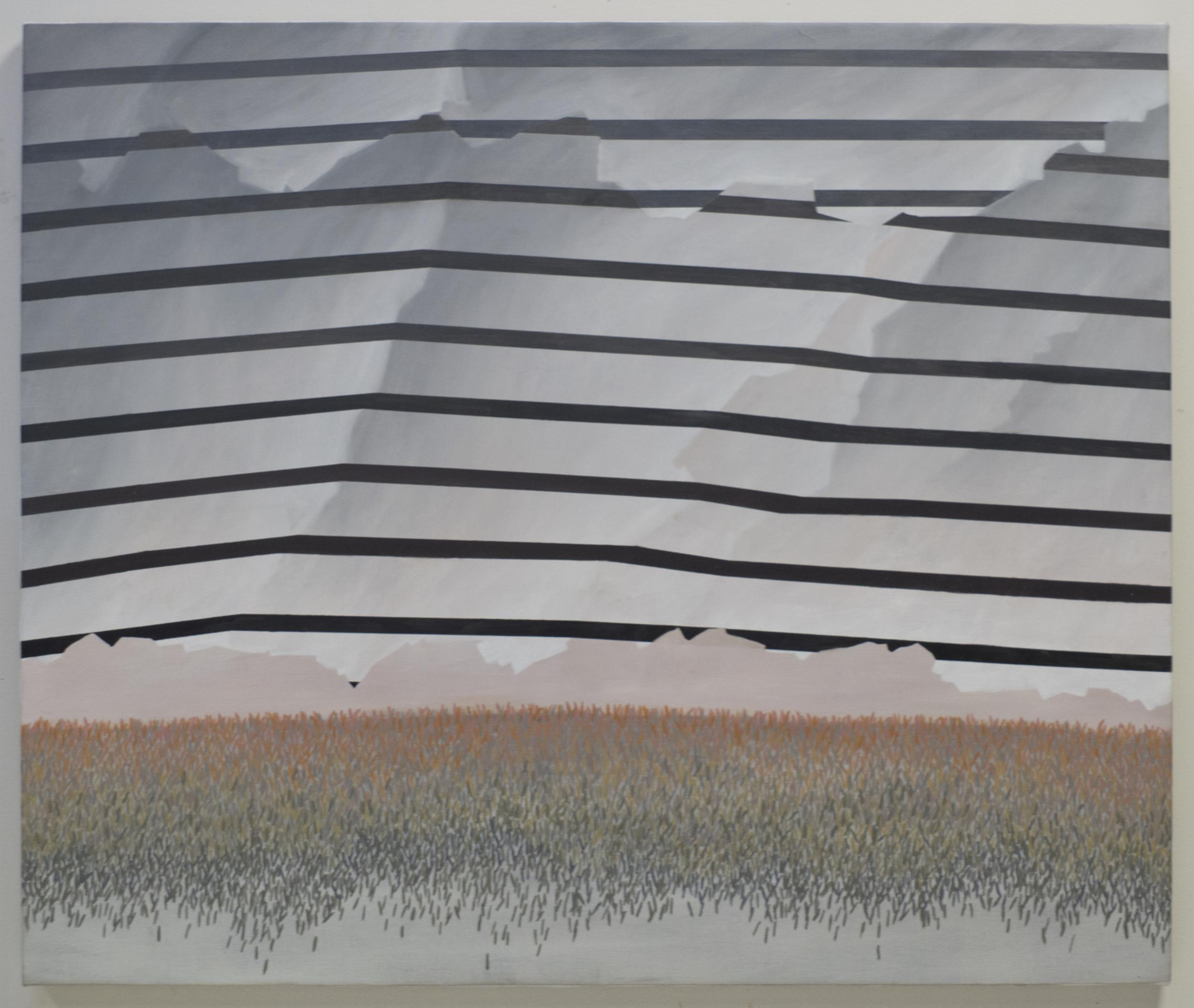 Stripes and Grass.jpg