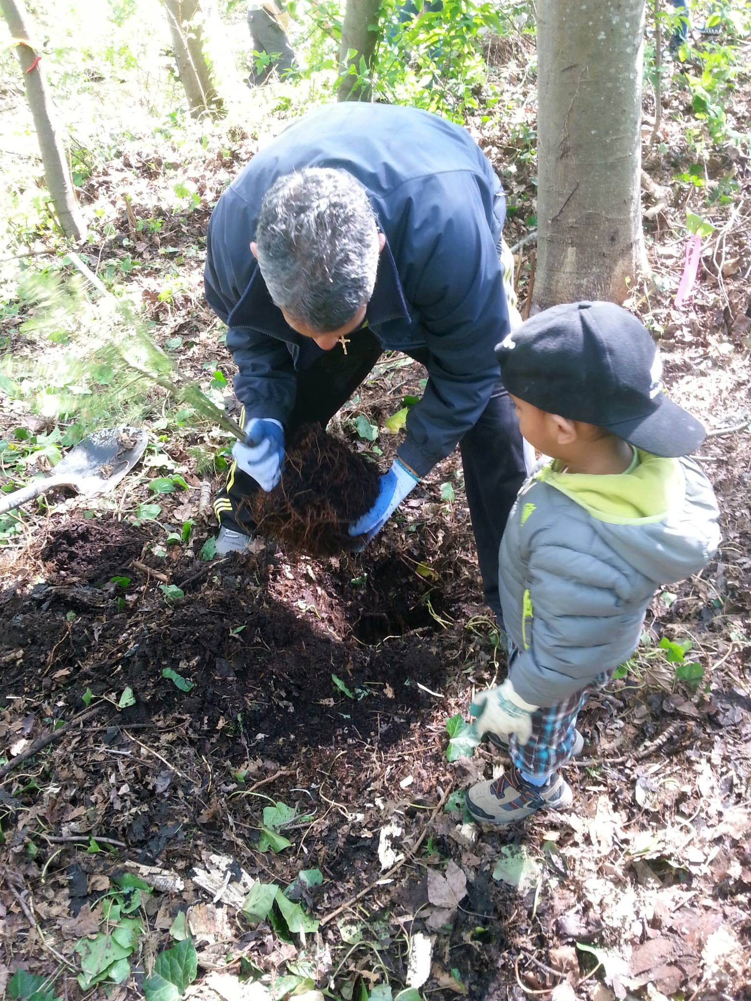 A father and son plant a non-invasive tree after heavy removal of English ivy, an invasive species (Photo: Robbin Whachell)