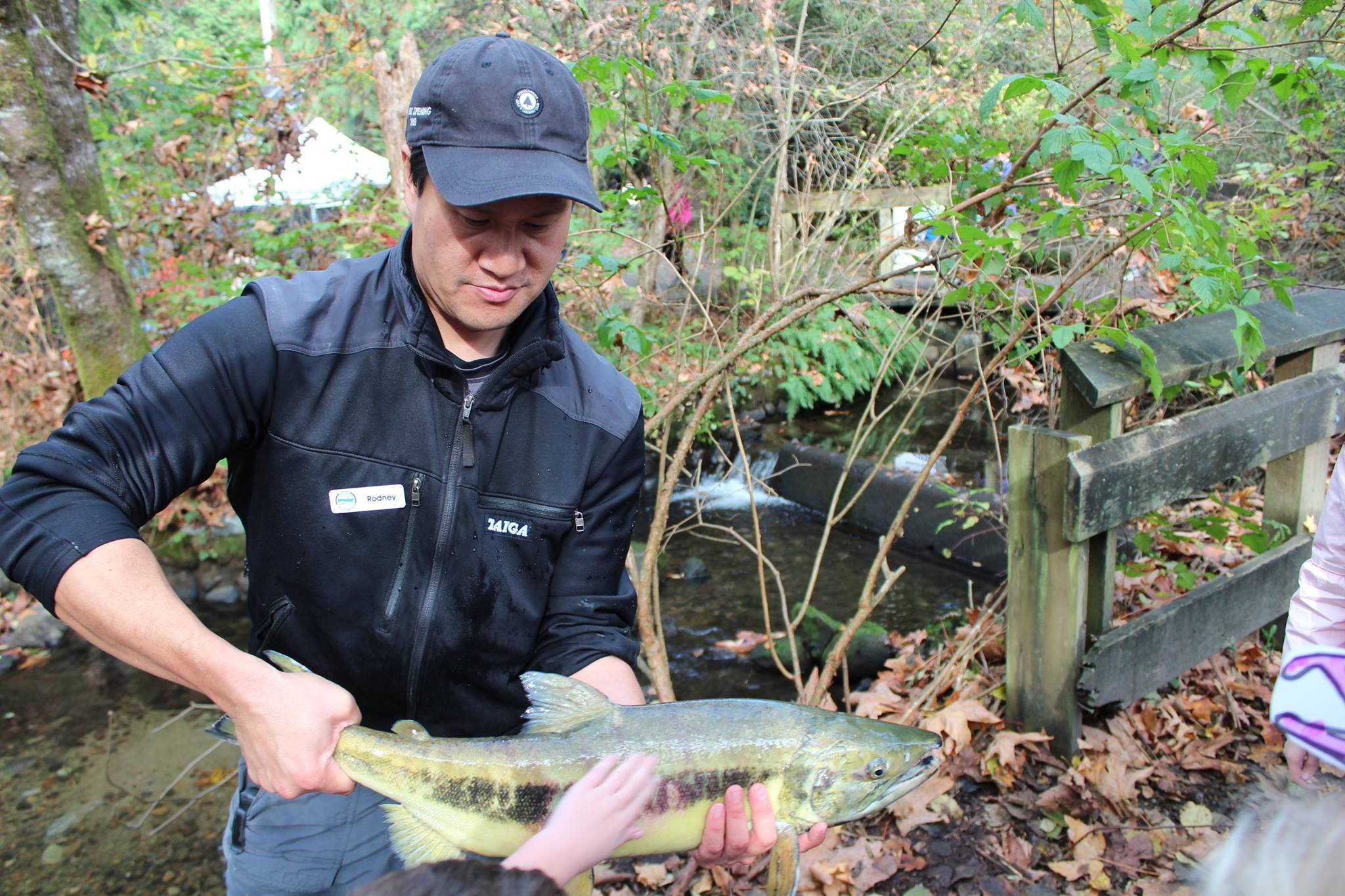 Rodney holds a chum salmon beside Hoy Creek during our Salmon Come Home Festival in October.