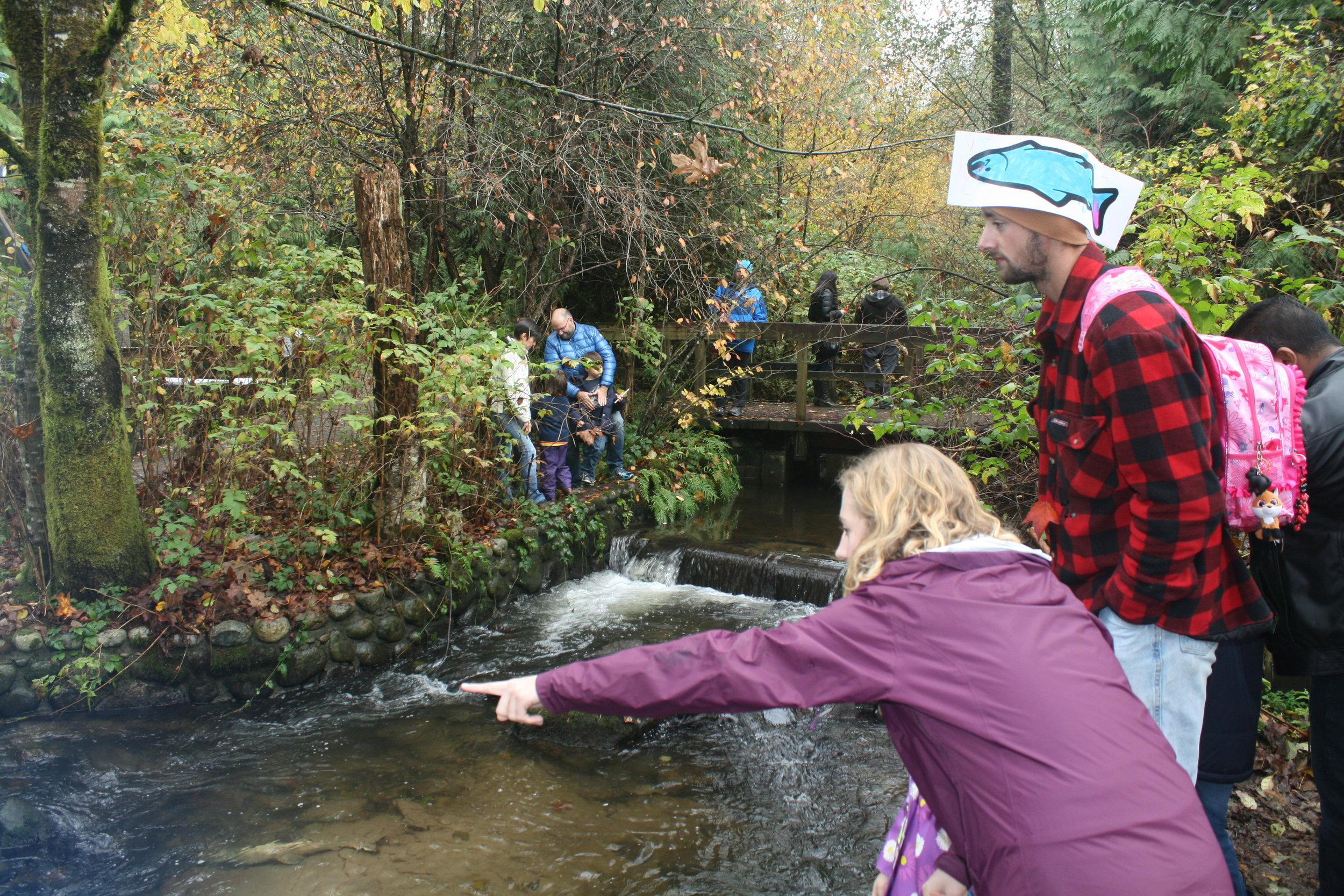 Residents gather along Hoy Creek to view the return and spawning of chum salmon at Salmon Leave Home on October 23rd. (Photo: Robbin Whachell / HSWS)