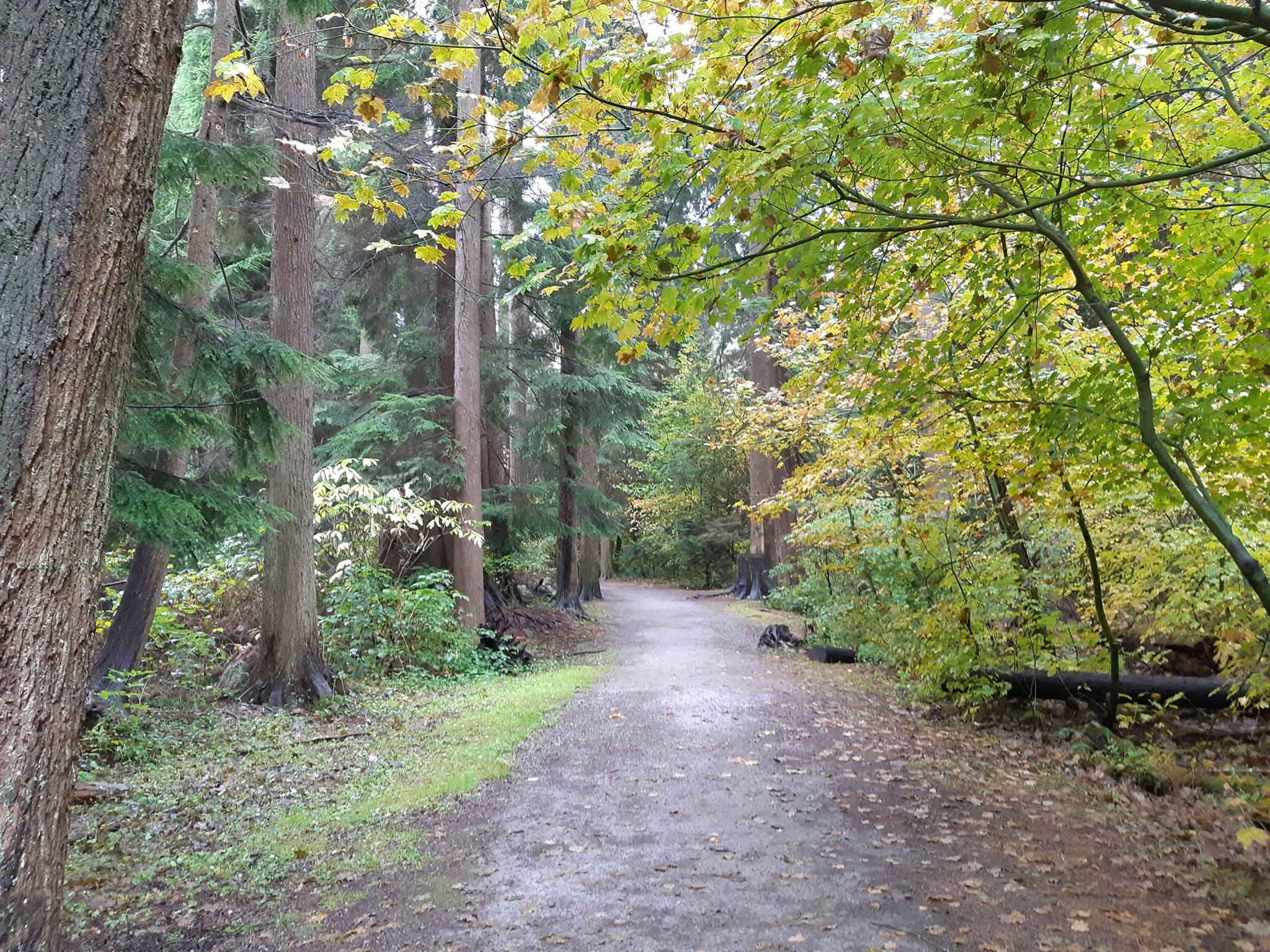 It's a beautiful time of year to explore Hoy Trail.