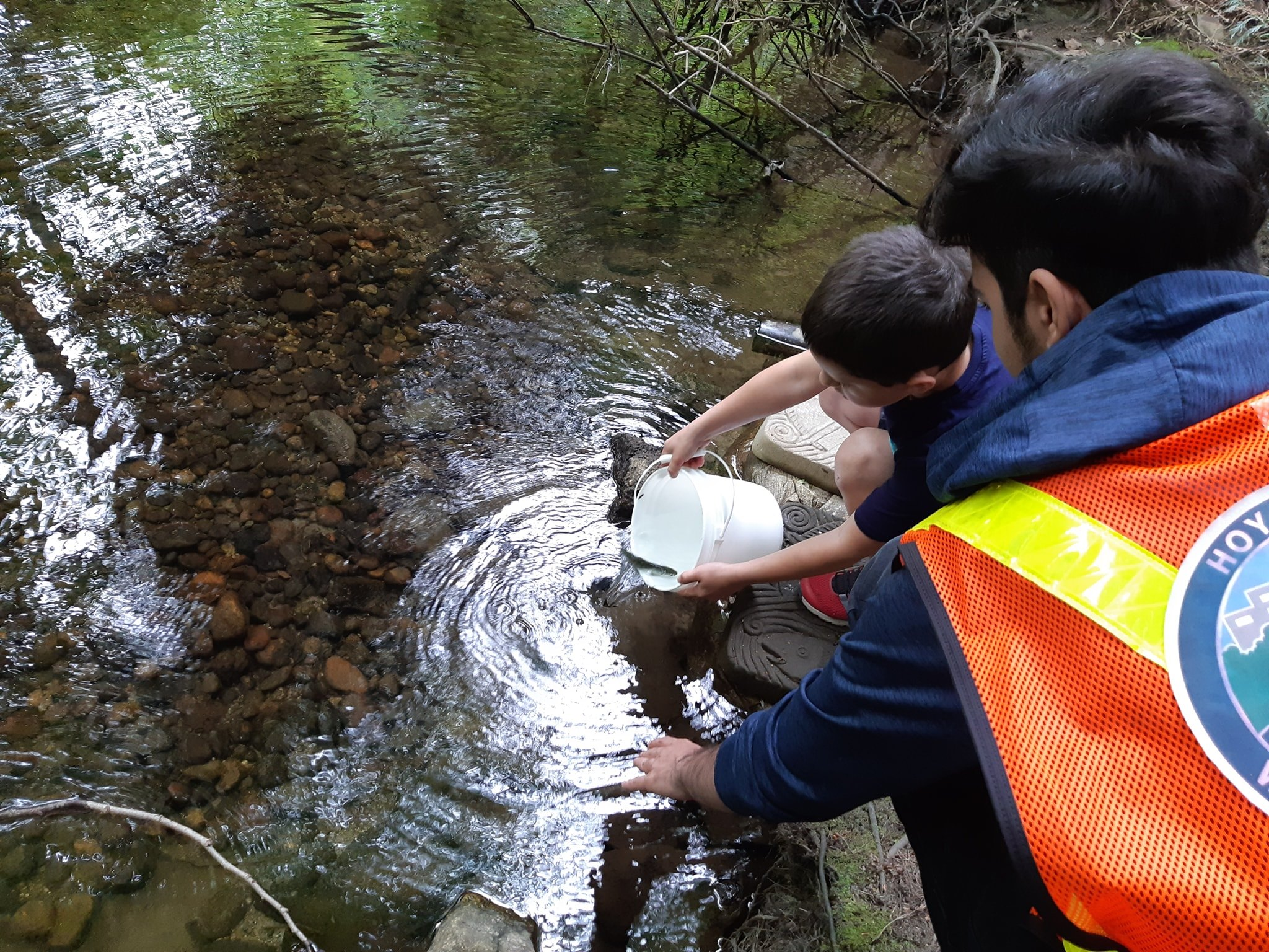 A student volunteer guides a boy in releasing a coho smolt at Salmon Leave Home