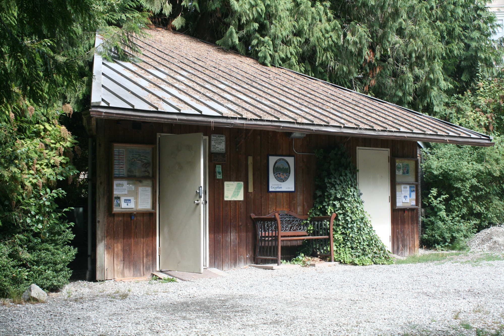 Hoy Creek Hatchery is located east of Douglas College David Lam campus in Coquitlam, along Hoy Trail.