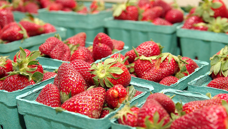 PHO_Fishers_Strawberries02.jpg