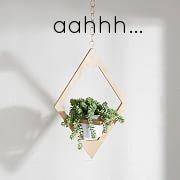 hanging planter.jpg