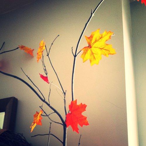 leaf one.jpg