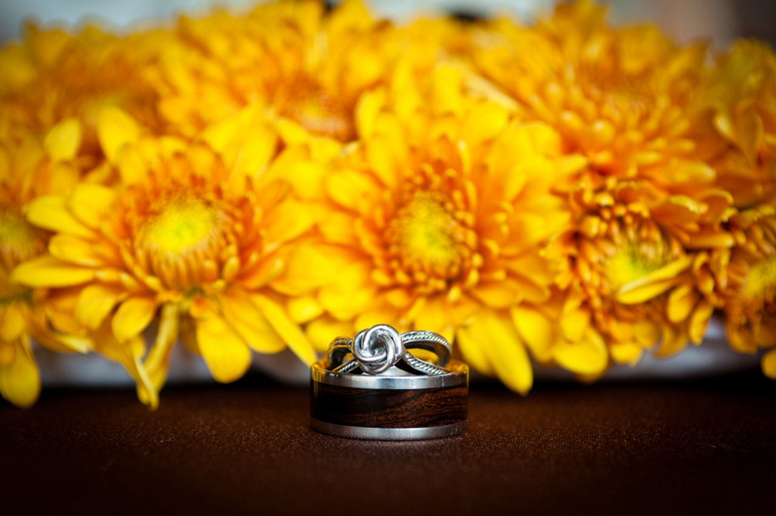6 bride and groom rings wedding ring pictures bride and groom rings with flowers Kent Drake photography Life Design events.jpg