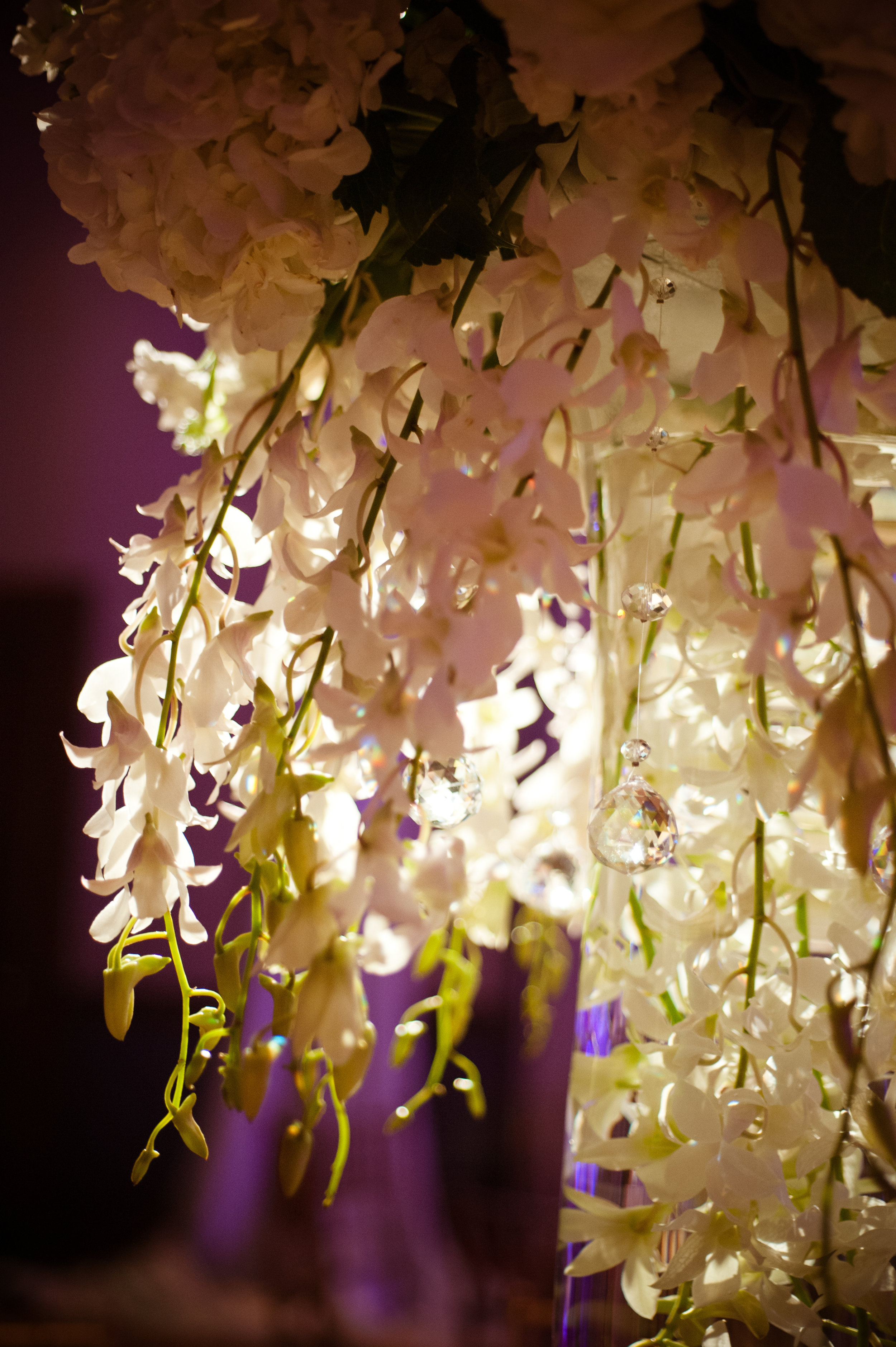 35  tall centerpieces purple and white centerpieces unique centerpieces elegant centerpieces fancy centerpieces Christine Johnson Photography Life Design Events .jpg