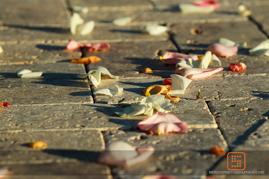 12 petals down the aisle colorful petals down the aisle Sergio Photography Life Design Events.jpg