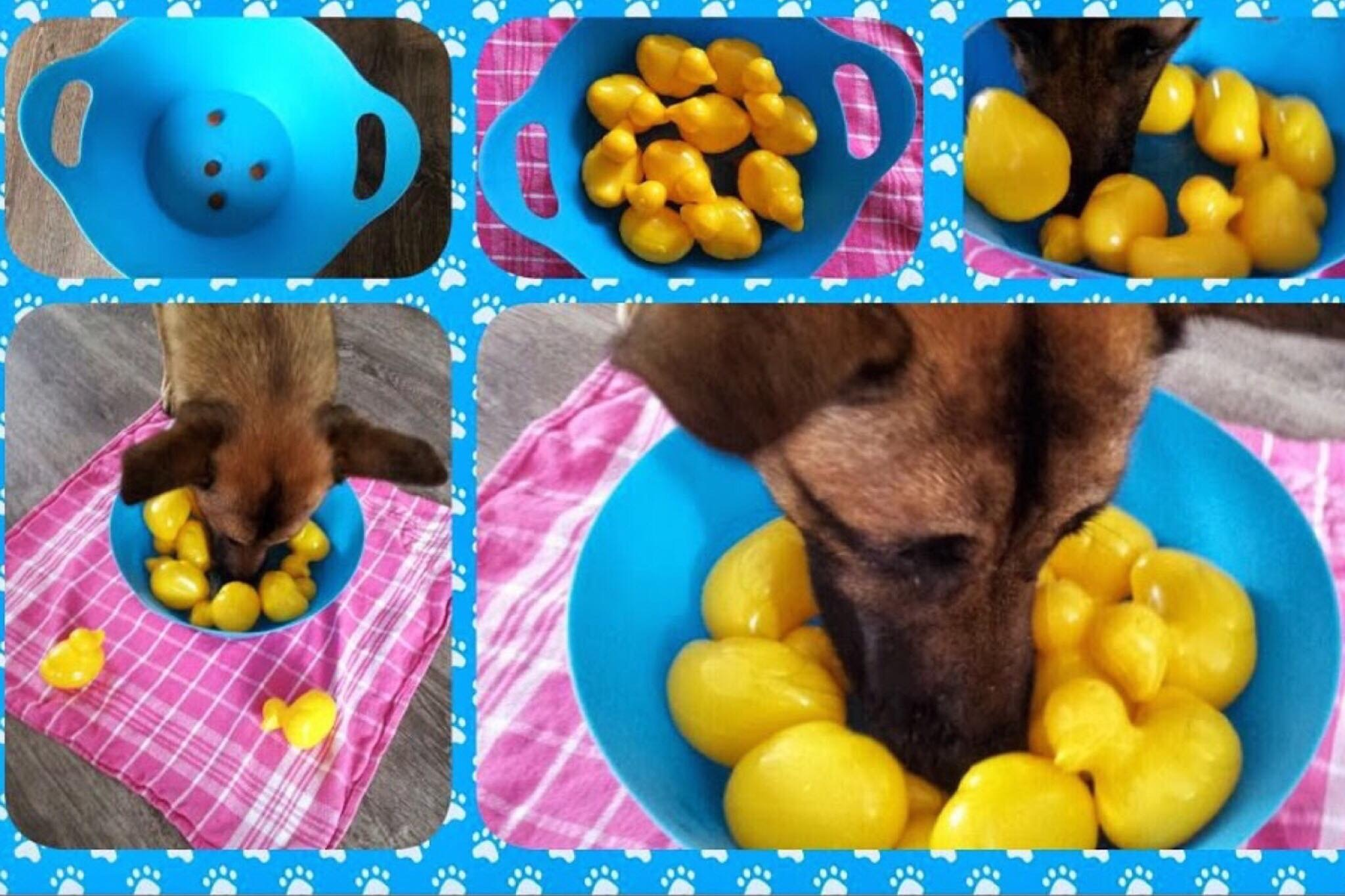 Beach Basket with Rubber Duckies Search