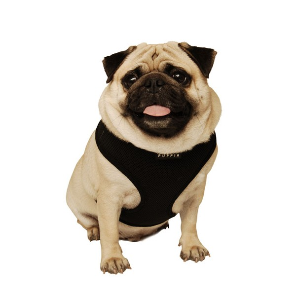 puppia-soft-dog-harness-black.jpg