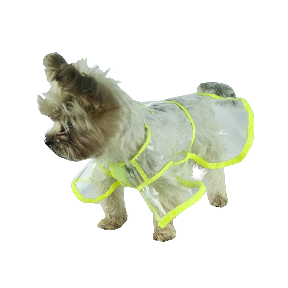 lola_dog_raincoat_neon_green_by_moshiqa.jpg