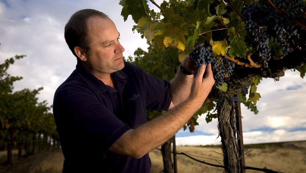 Head winemaker at Chateau St. MIchelle