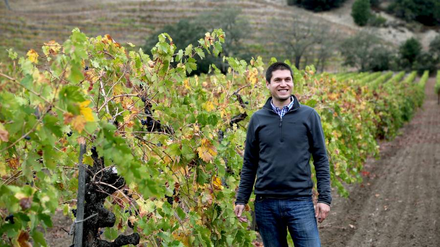 Superstar winemaker, Matt Crafton, of Chateau Montelena, is pictured here in his vineyard.