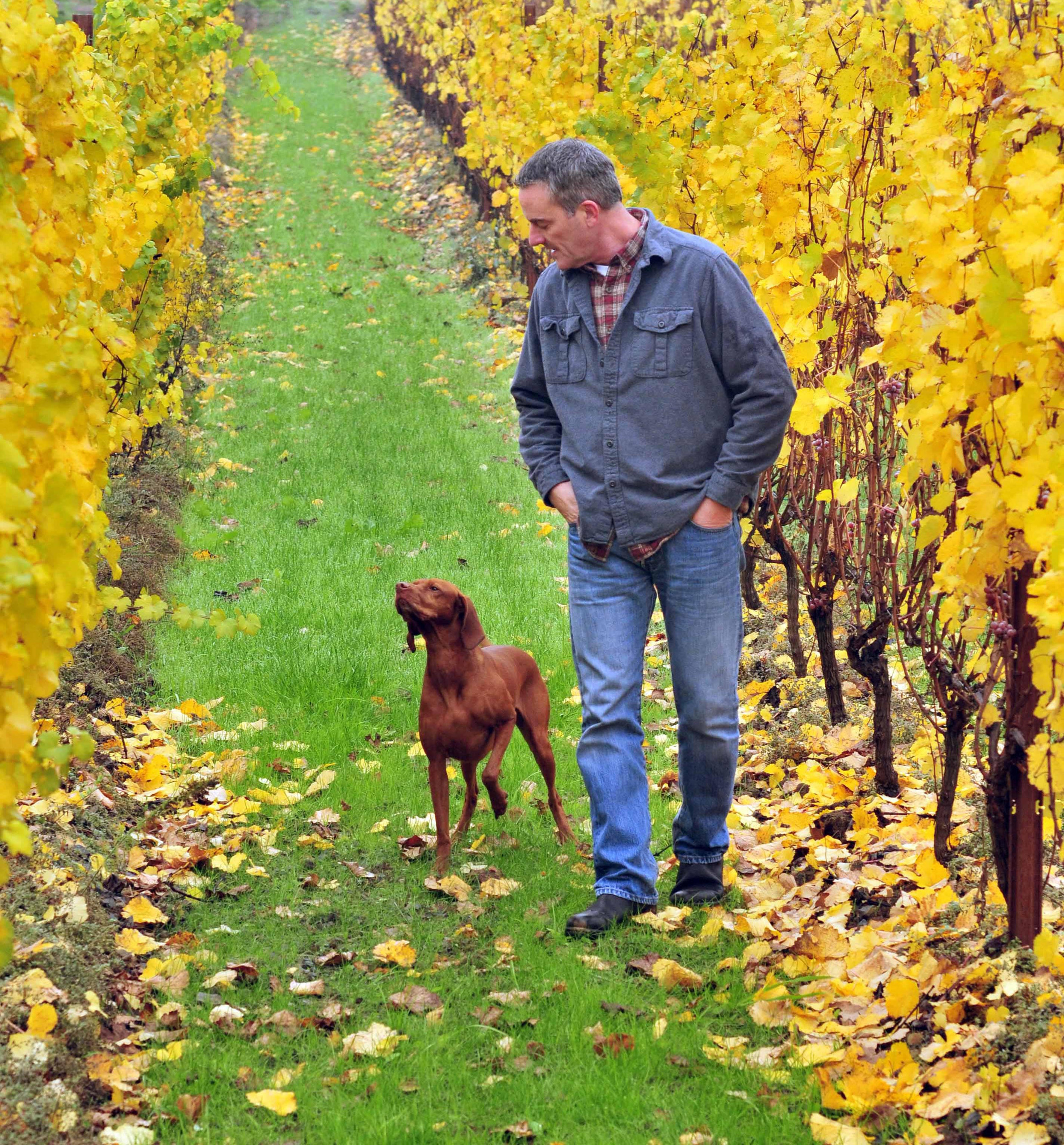Fantastic photo here of Trisaetum co-owner and winemaker, James Frey, in his Ribbon Ridge vineyard.
