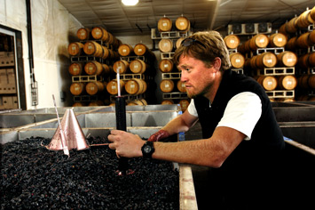 Great photo here of Mike Sharon, production winemaker at L'Ecole No. 41.