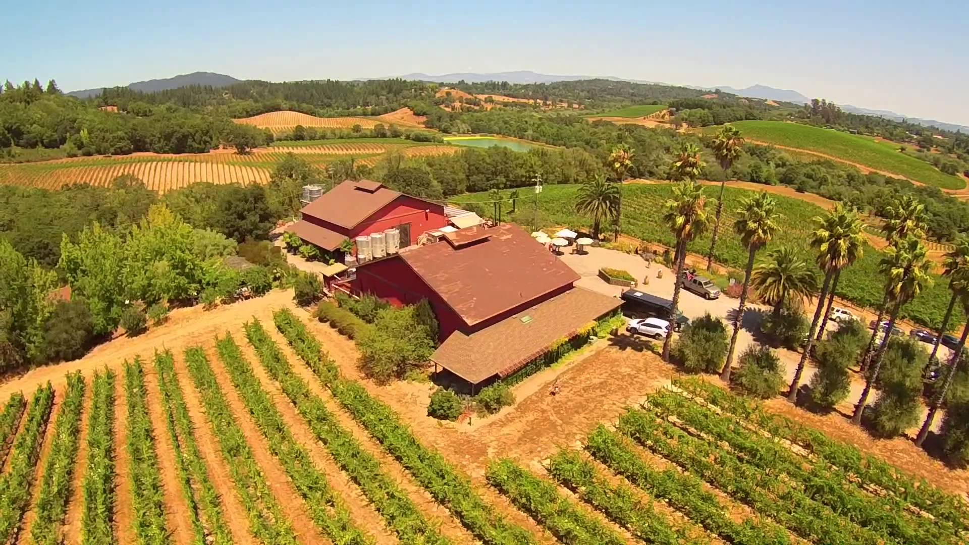 Iron Horse is one of the most gorgeous properties in Sonoma. Their new release sparkling wines were simply outstanding.
