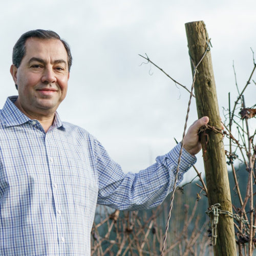 Great photo here of Mo Ayoub in his vineyard.
