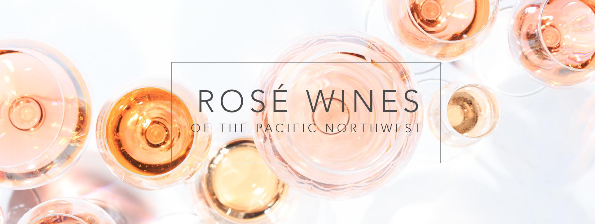 Our comprehensive 2019 Pacific Northwest Rose Report has highlighted some exceptional new release Rose wines from the Pacific Northwest.