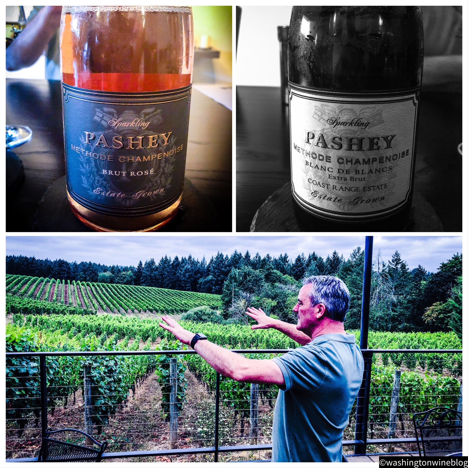 The new Pashey wines by the talented James Frey are simply brilliant, terroir-driven efforts.