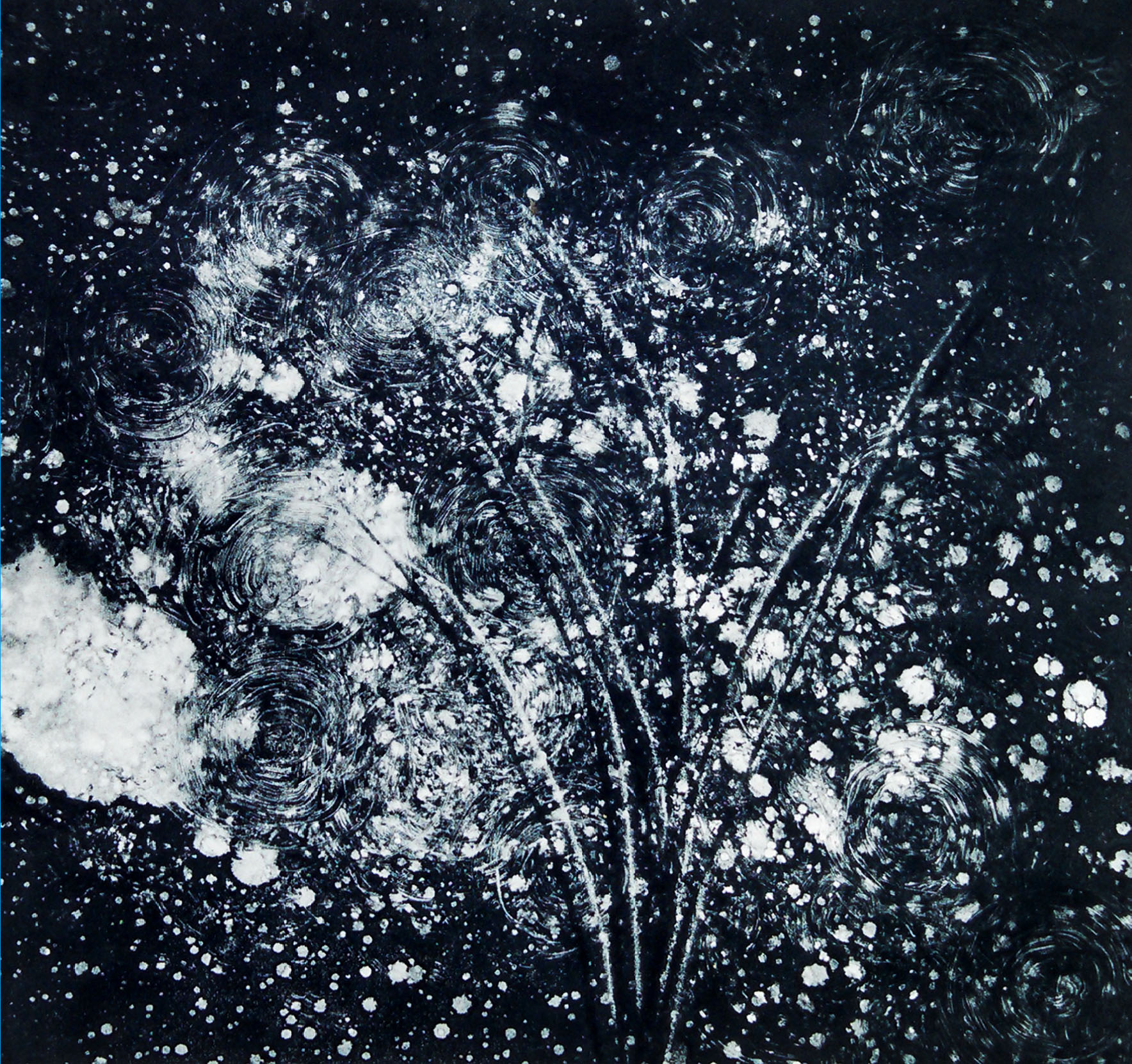 "Dandelions at Midnight,  monotype, 12"" x 12"" (30cm x 30cm)"