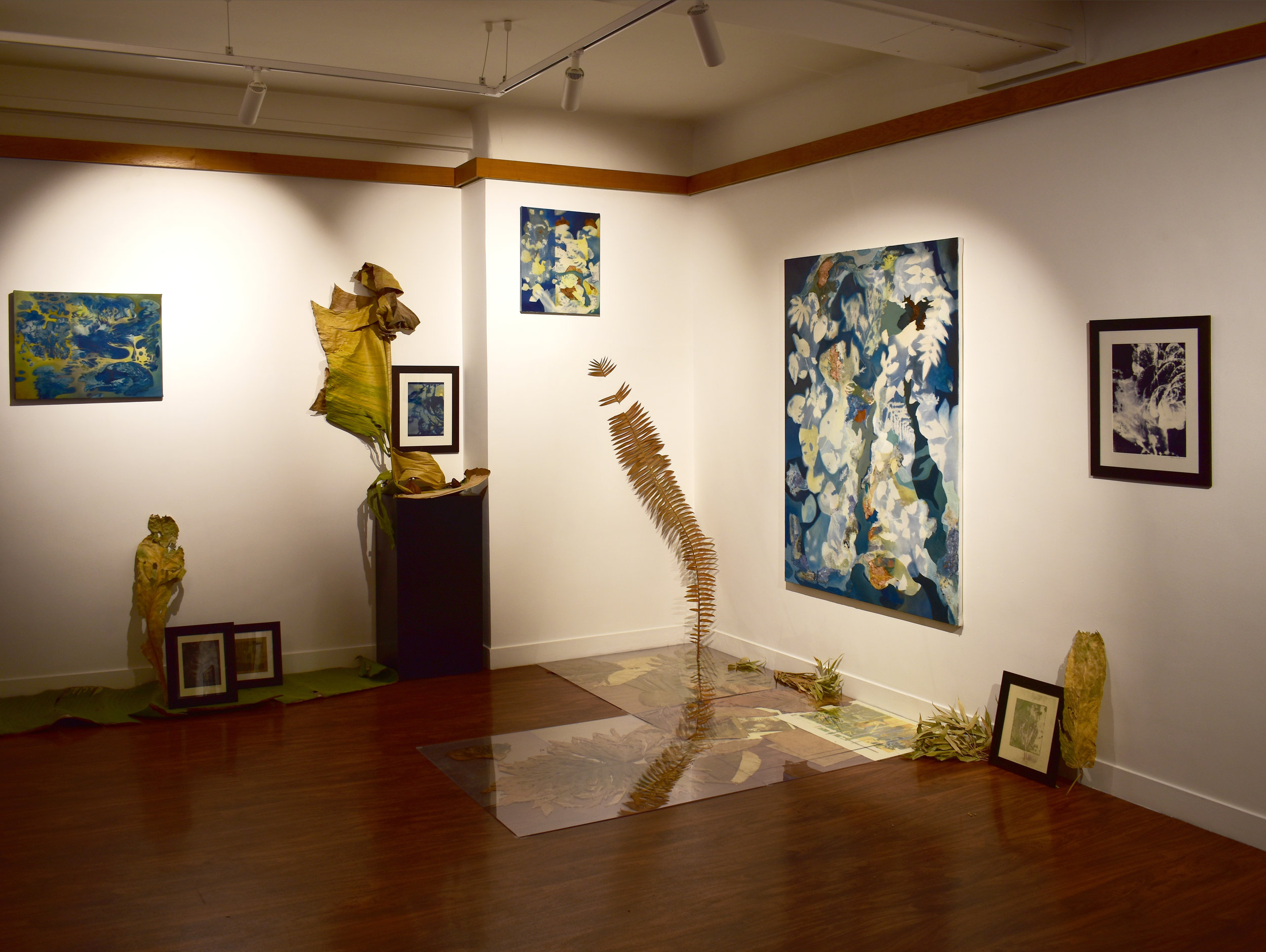 Installation, exhibition,  How to Capture Flow,  January 2018.