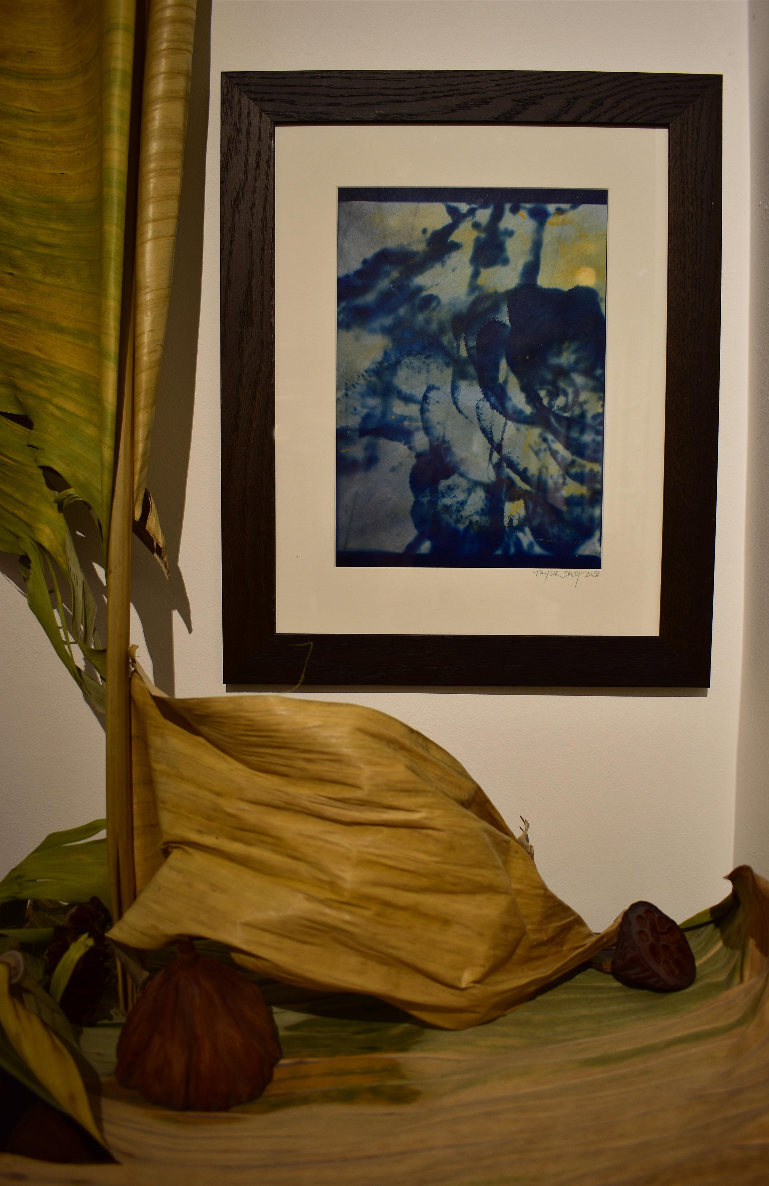 HTCF_cactus flower_installation_3.jpg