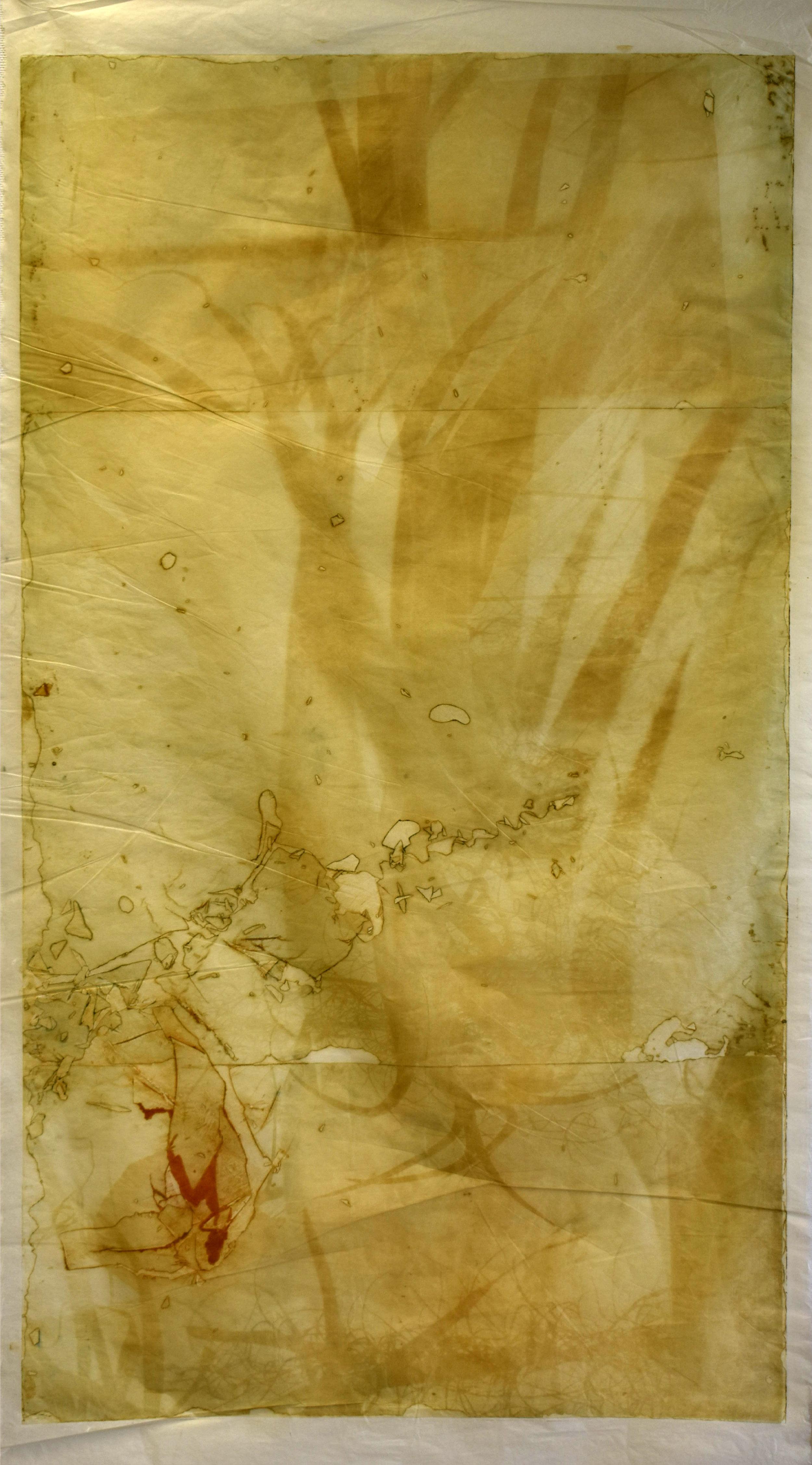 Interlaced, No. 4,  2019,   series of 6 photopolymer prints on Korean semi-transparent long fiber paper, 74cm x 141cm each.