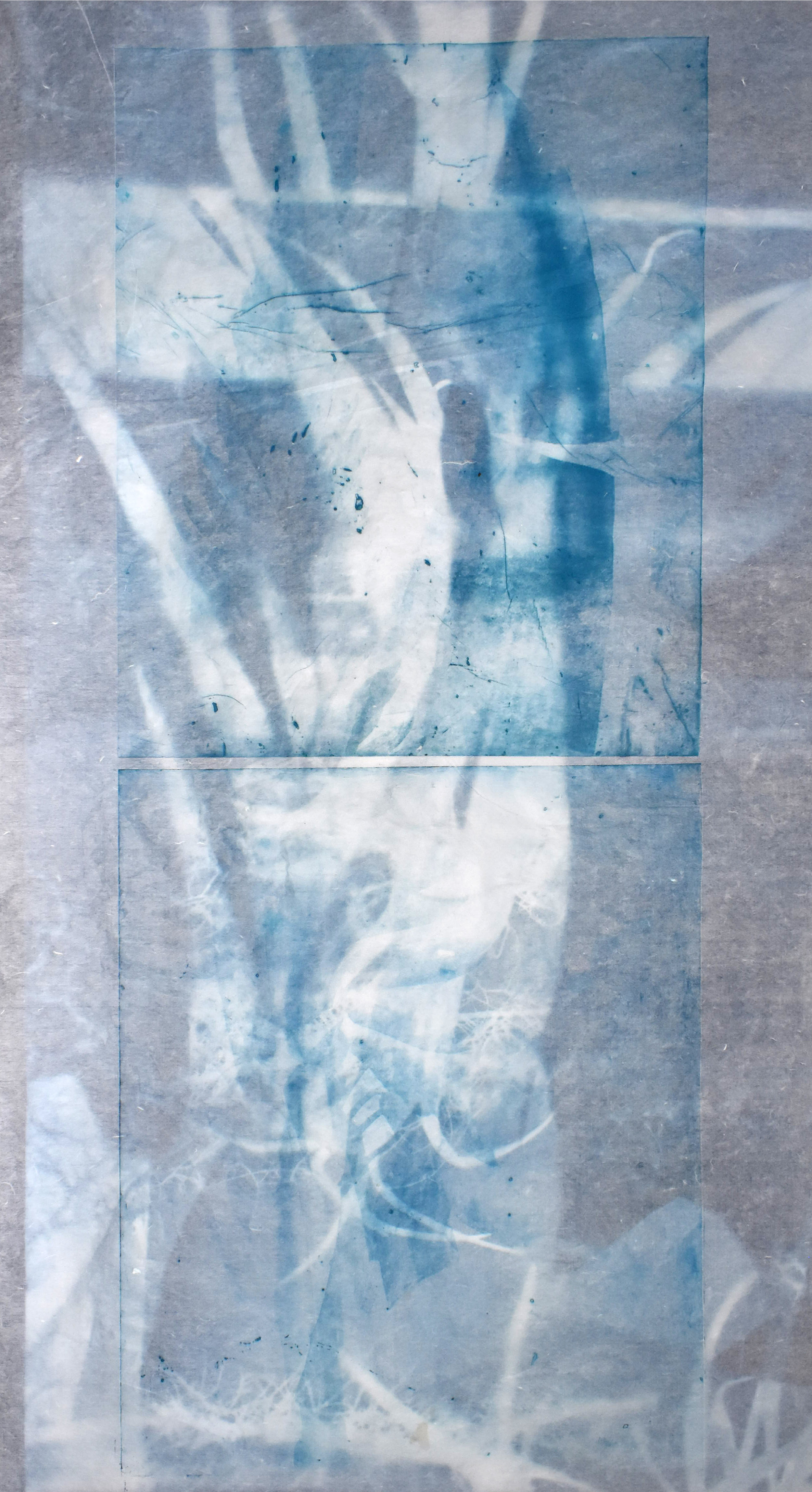 Superposition of  Interlaced (cyan), No. 2  and  Transparent Growth,  2019 (photopolymer print on Korean semi-transparent paper, superposing macroscopic images of banana leaves and other plants (taken at the greenhouses of Versailles-Chèvreloup, France).