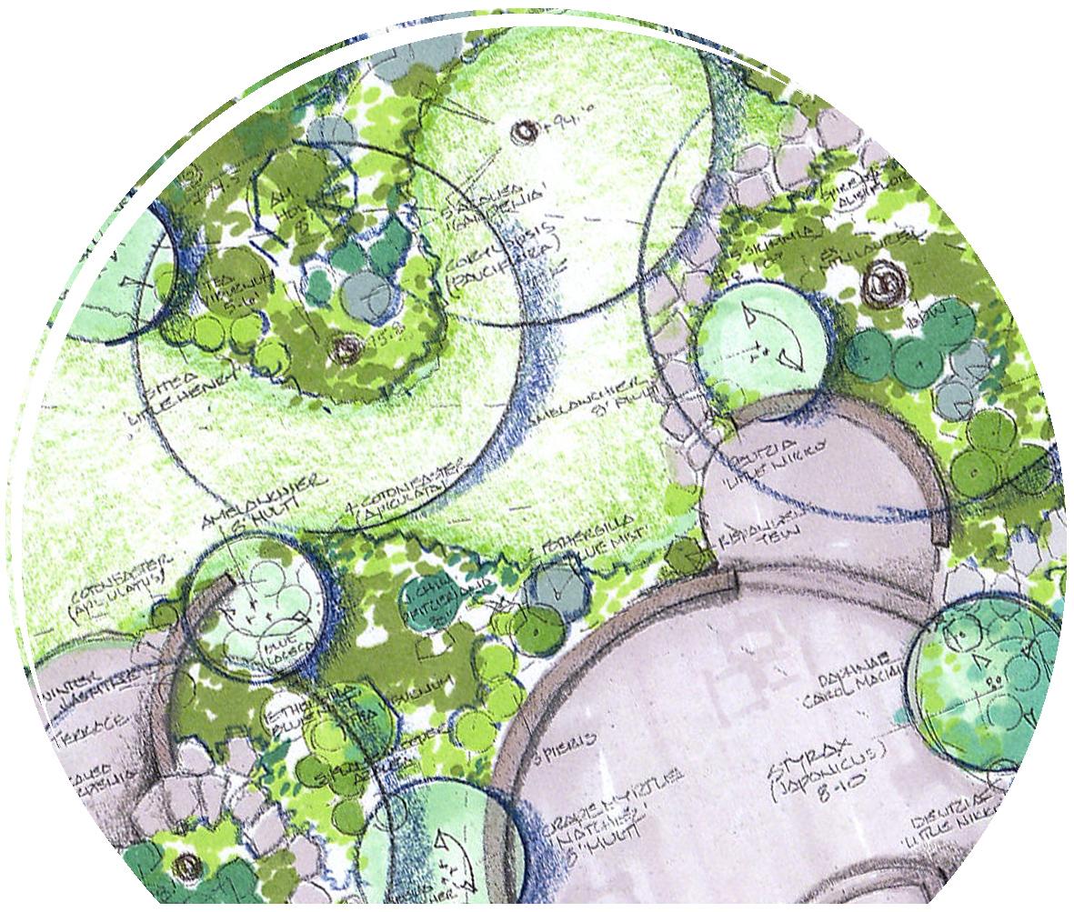 design circle c1.JPG
