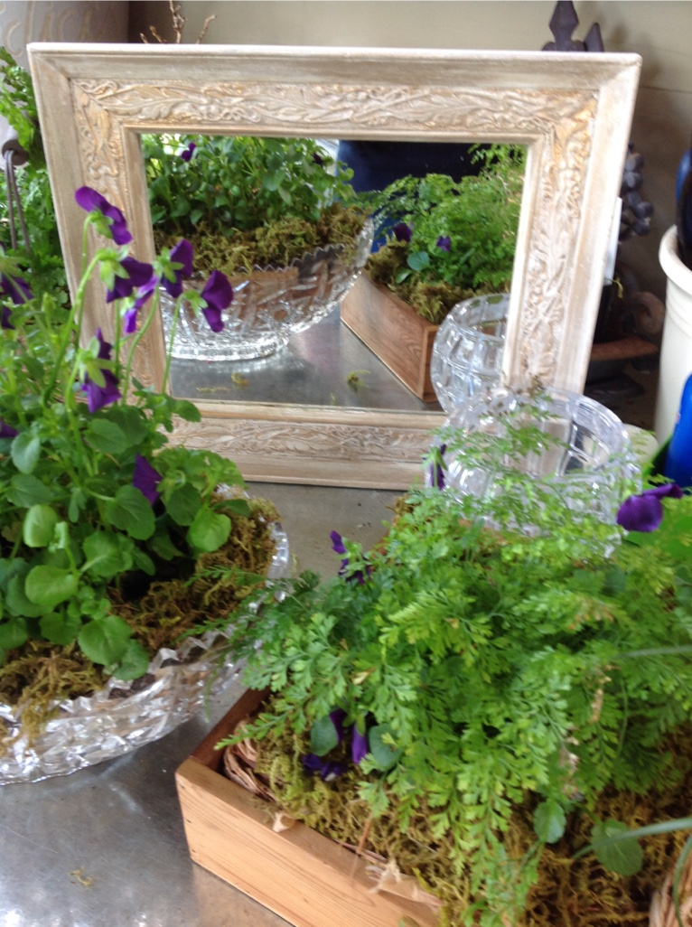 Vintage Frames & Potted containers.....