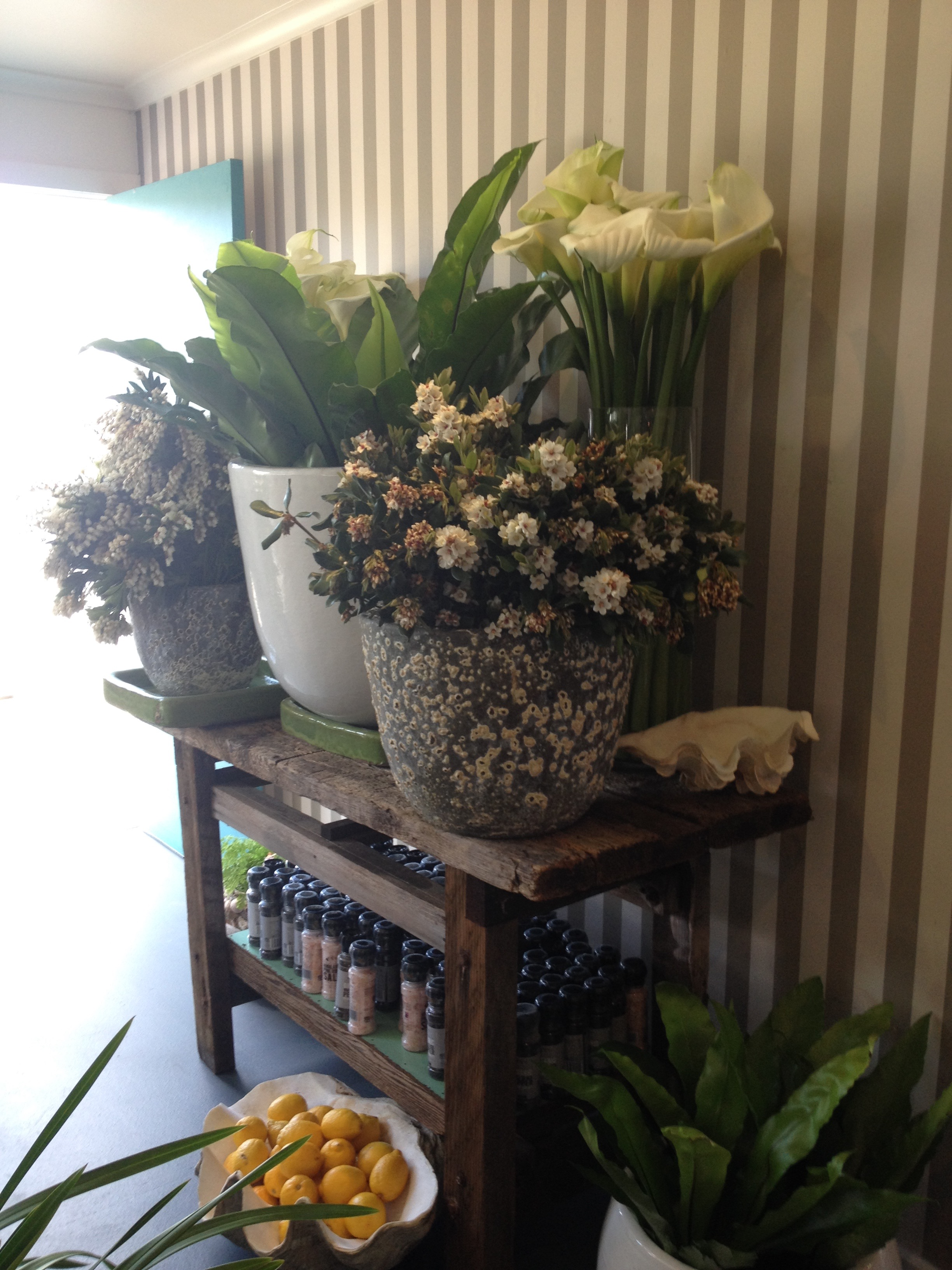 Opposite the high table & chairs at the Boatshed...gorgeous array of flowers for sale.