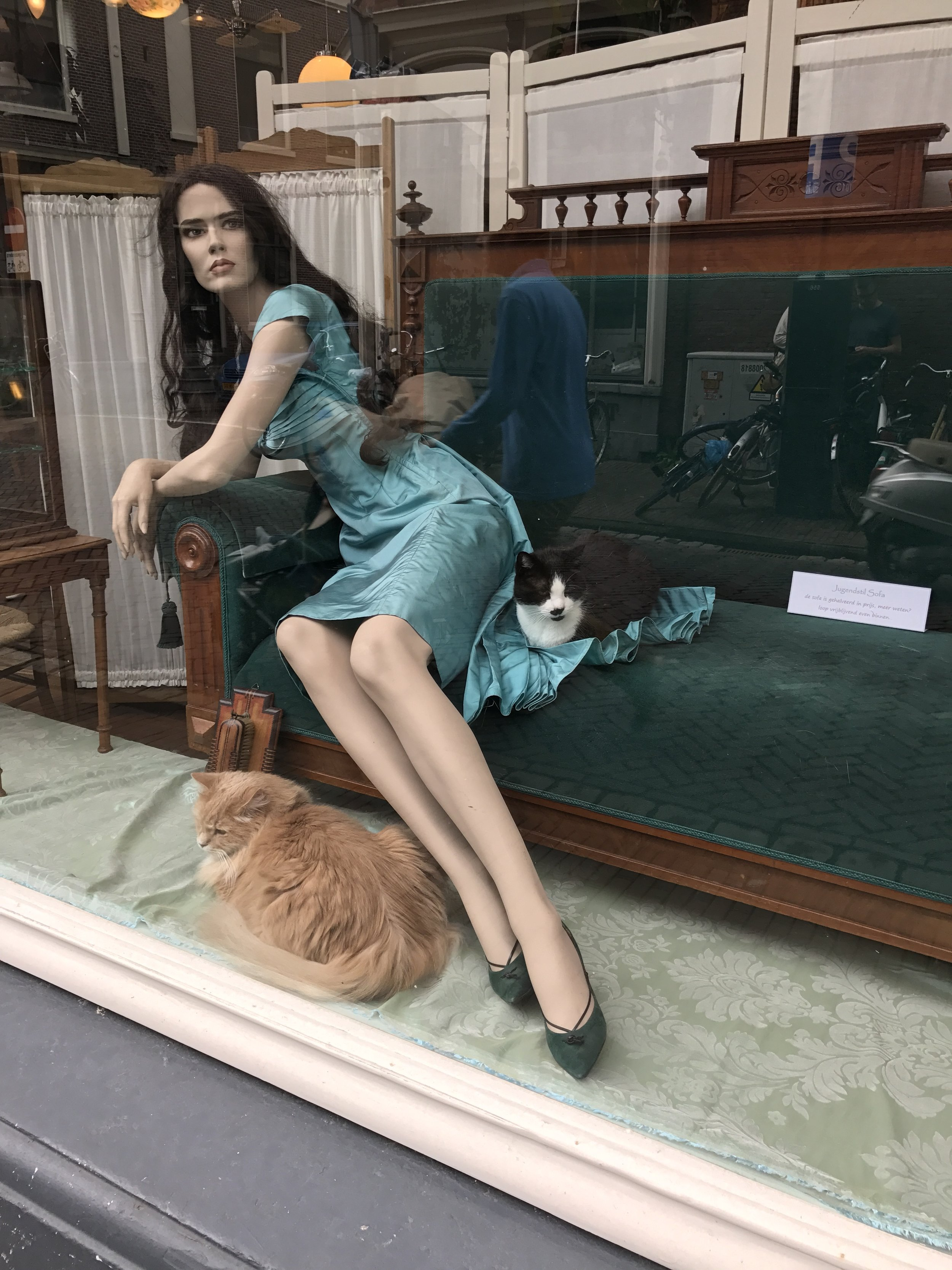 The owners cats take pride of place next to the shop model in a creative viginette !!!