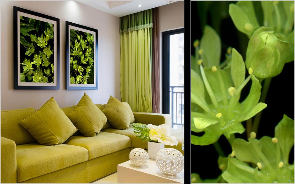 08-green.jpg
