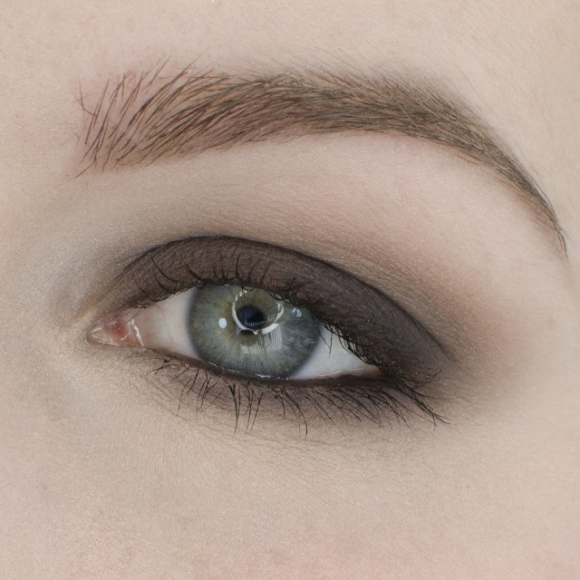 Basic Matte Smokey Eyeshadow Tutorial