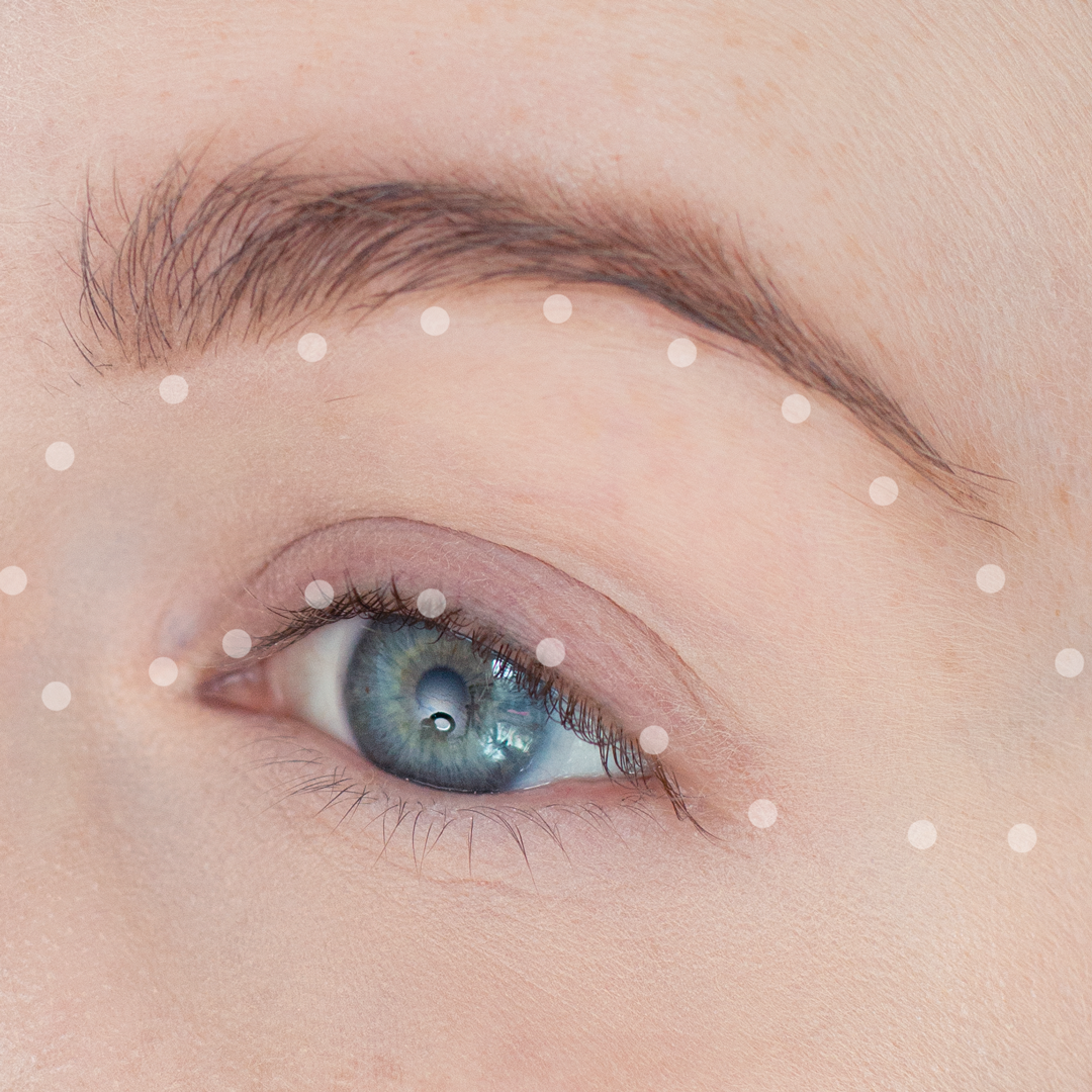 Night-Out-Glam-Warm-Step-by-Step--Eyeshadow-Tutorial-step-1dots.png