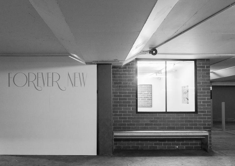 Marilyn Schneider,  Forever New  , 2014, Laser cut vinyl lettering, partition wall -MDF, pine, screws.