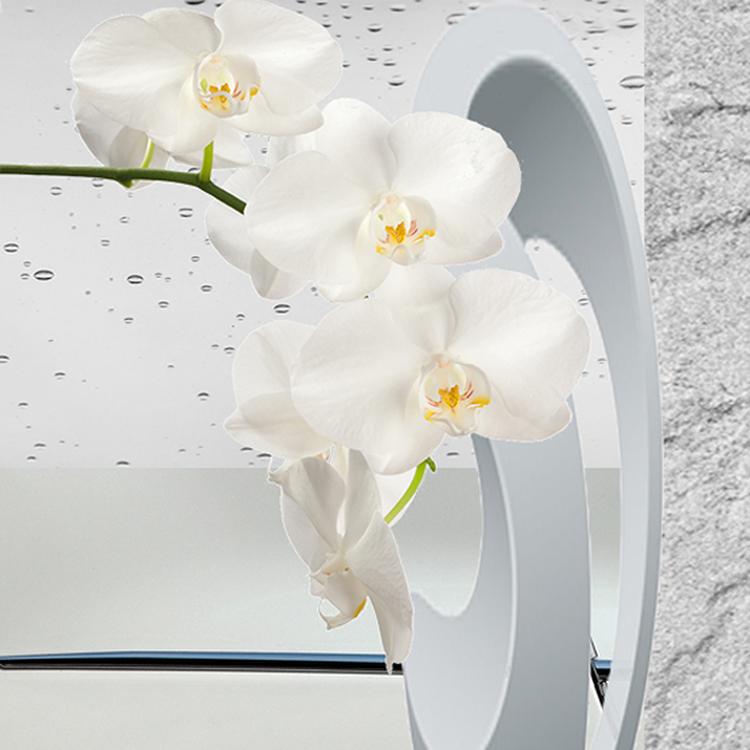 Marilyn Schneider, Forever New , digital collage, 2014.
