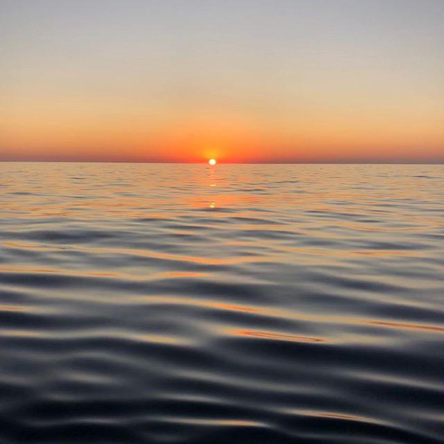 Coucher du soleil de fou ce soir avec les dauphins 😜#aleaurando #corsica #fun #snorkeling #vacancesenfamille #aperodinatoire #holidays #dauphins #easybreath #bateau #ilessanguinaires