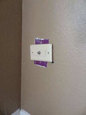 Purple!.JPG