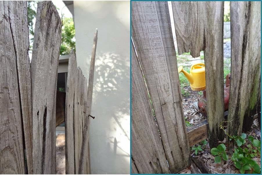 Fence+Damage.jpg