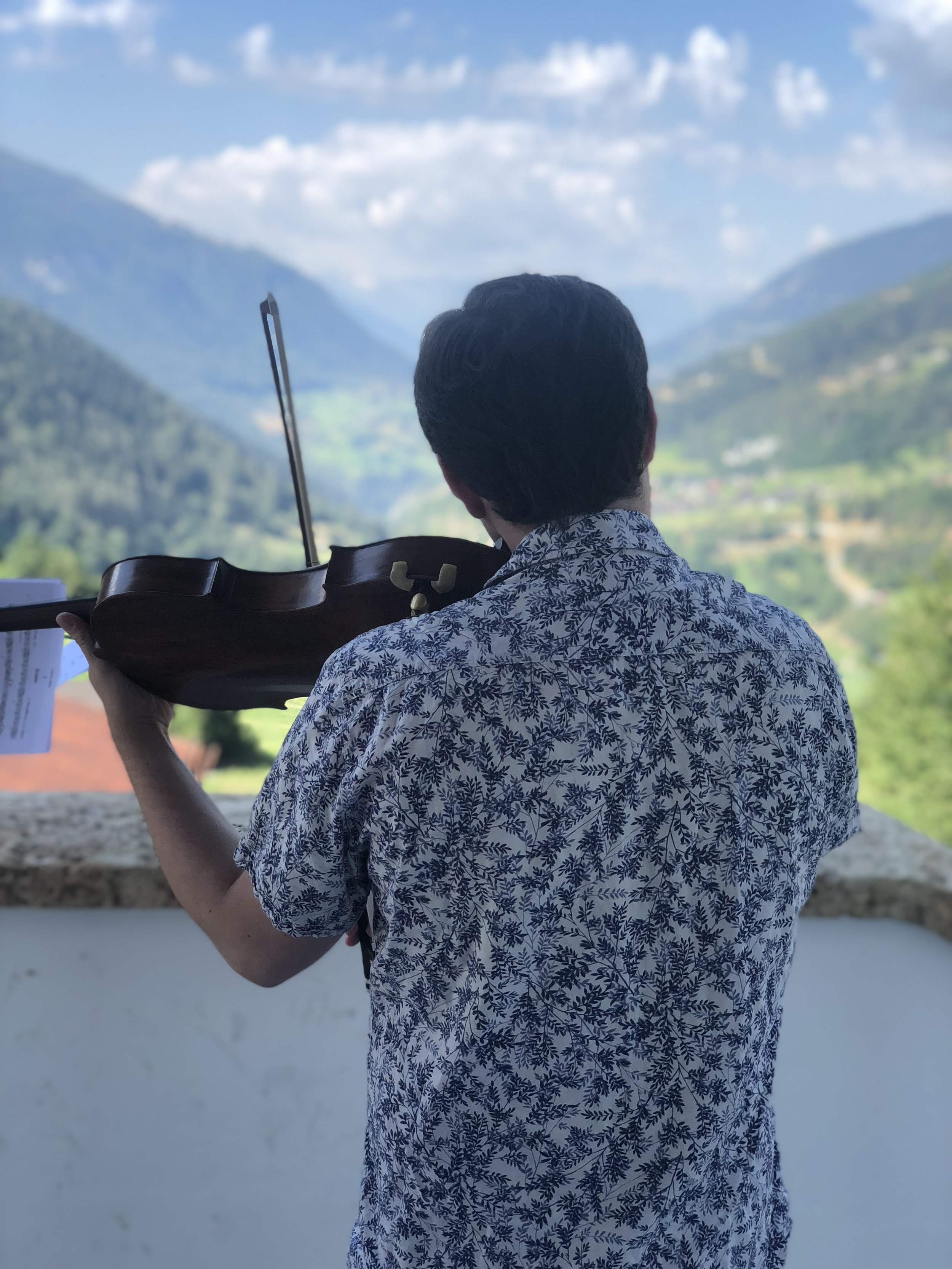 Timothy Ridout, violist